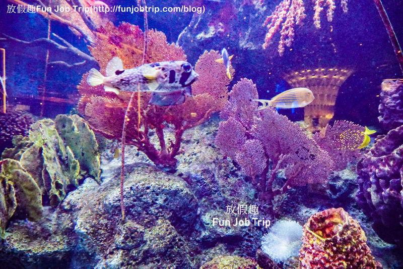 020_Copper Aquarium Restaurant.jpg