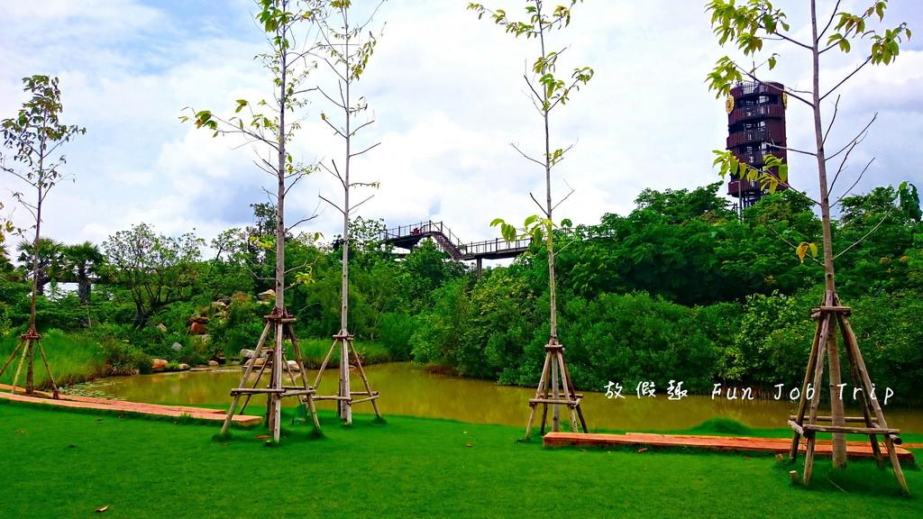 009PTT Forest.JPG