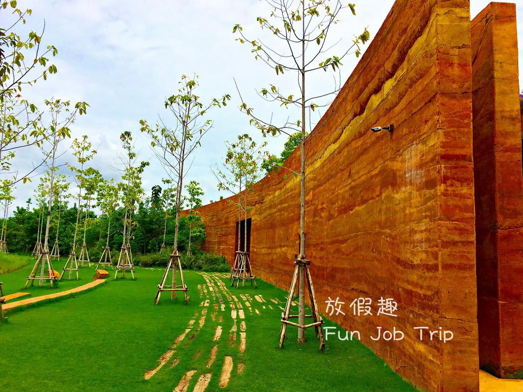020PTT Forest.jpg
