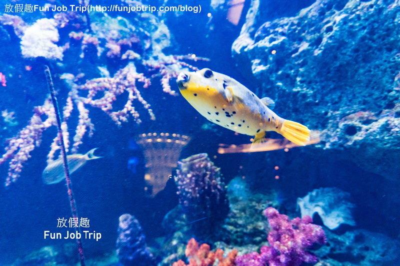 009_Copper Aquarium Restaurant.jpg