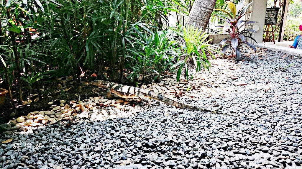 020(設施)Anantara Riverside Bangkok Resort.JPG