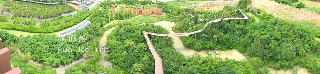 023PTT Forest.jpg