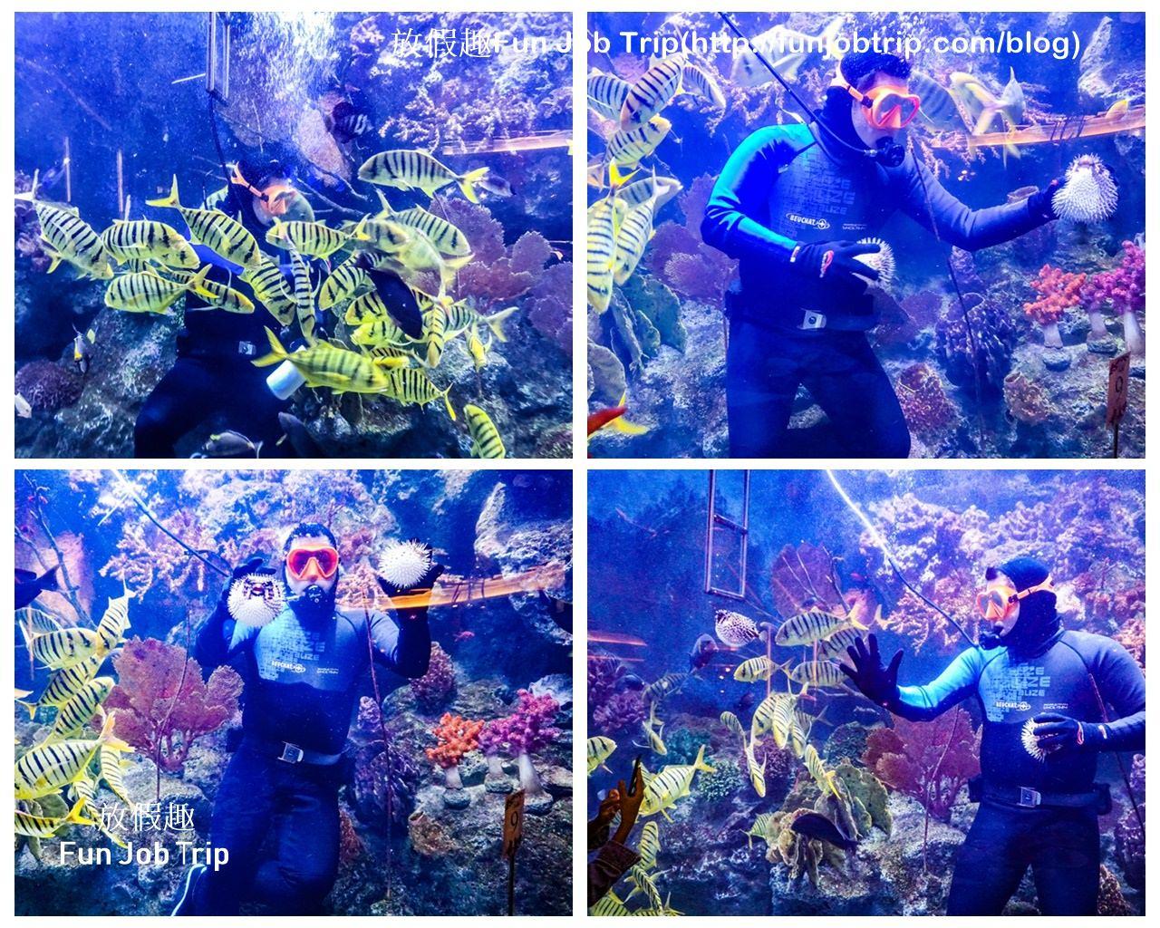 028_Copper Aquarium Restaurant.jpg